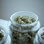 Medical Uses of Cannabis